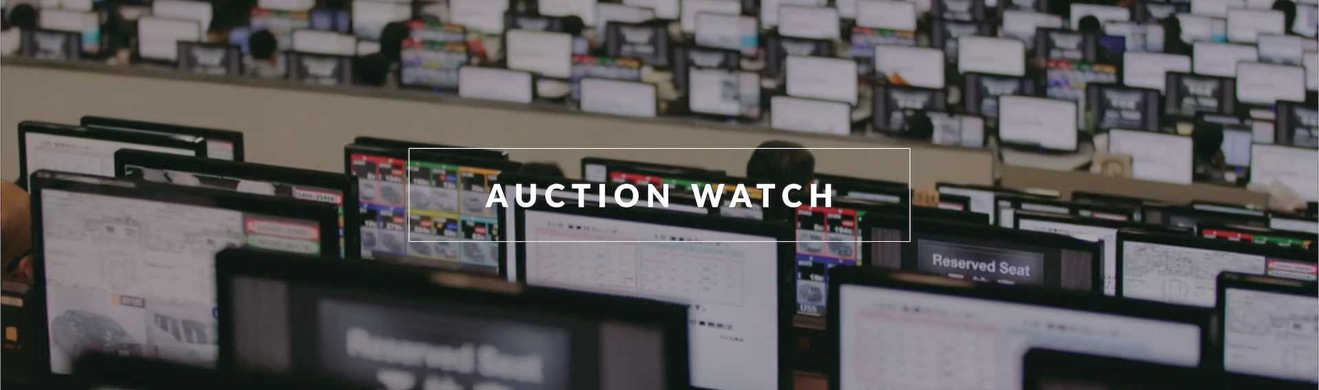 Auction Watch