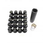 Rays 17HEX Steel Lock & Wheel Nut Set